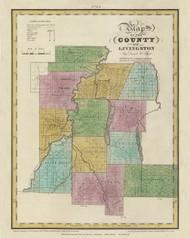 Livingston County New York 1829 - Burr State Atlas