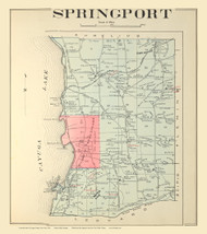 Springport , New York 1904 - Old Town Map Reprint - Cayuga Co. Atlas