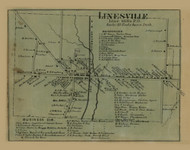 Linesville, Pennsylvania 1865 Old Town Map Custom Print - Crawford Co.