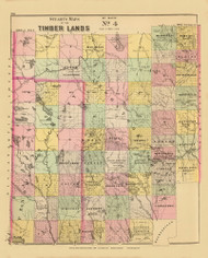 Timber Lands No. 4 - Island Falls 11, Maine 1894 Old Map Reprint - Stuart State Atlas