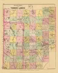 Timber Lands No. 4 - Island Falls 11, Maine 1894 Old Map Reprint - Stuart State Atlas