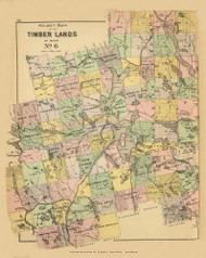 Timber Lands No. 6 - Moosehead Lake - The Forks 13, Maine 1894 Old Map Reprint - Stuart State Atlas