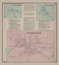 Waterburgh, Jacksonville and Trumansburgh Villages 55, New York 1866 - Old Town Map Reprint - Tompkins Co. Atlas