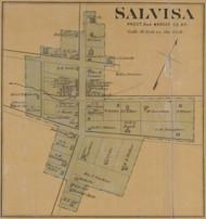 Salvisa Village - Precinct 4 - Mercer County, Kentucky 1876 Old Town Map Custom Print - Mercer Co.