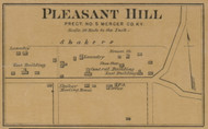 Pleasant Hill Village - Precinct 5 - Mercer County, Kentucky 1876 Old Town Map Custom Print - Mercer Co.