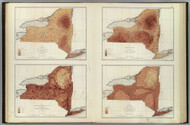 New York State Rainfall, Temperature, Population, Hypsometric Maps New York 1895 - Other Maps Old Map Custom Reprint - Bien State Atlas