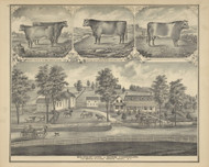 Residence & Dairy Farm of George Schermerhorn, New York 1876 - Old Town Map Reprint - Broome Co. Atlas 71