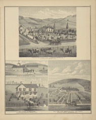 Residences of Zenus Barnum, Eli S. Meeker, and D.C. McGraw, New York 1876 - Old Town Map Reprint - Broome Co. Atlas 85