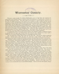 Worcester County Text, Maryland 1866 Old Map Reprint 61