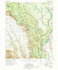 Indian Bay, Arkansas 1970 (1970) USGS Old Topo Map Reprint 15x15 AR Quad 260116