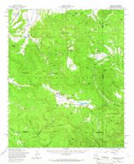 Alpine, Arizona 1958 (1966) USGS Old Topo Map Reprint 15x15 AZ Quad 314311