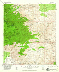 Bellota Ranch, Arizona 1957 (1960) USGS Old Topo Map Reprint 15x15 AZ Quad 314356