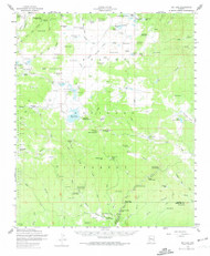 Big Lake, Arizona 1958 (1974) USGS Old Topo Map Reprint 15x15 AZ Quad 314366
