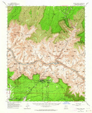 Bright Angel, Arizona 1962 (1964) USGS Old Topo Map Reprint 15x15 AZ Quad 314414