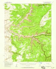 Canyon del Muerto, Arizona 1955 (1971) USGS Old Topo Map Reprint 15x15 AZ Quad 314455