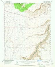 Emmett Wash, Arizona 1954 (1965) USGS Old Topo Map Reprint 15x15 AZ Quad 314578