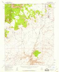 Fredonia, Arizona 1954 (1959) USGS Old Topo Map Reprint 15x15 AZ Quad 314602