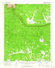 Grandview Point, Arizona 1962 (1964) USGS Old Topo Map Reprint 15x15 AZ Quad 314633