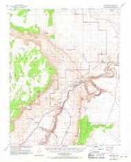 Lees Ferry, Arizona 1954 (1971) USGS Old Topo Map Reprint 15x15 AZ Quad 314748
