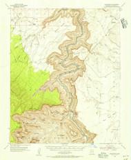 Nankoweap, Arizona 1954 (1956) USGS Old Topo Map Reprint 15x15 AZ Quad 314838