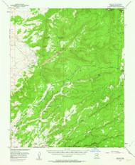 Nazlini, Arizona 1955 (1964) USGS Old Topo Map Reprint 15x15 AZ Quad 314845