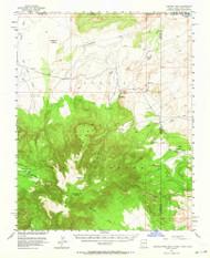 Pastora Peak, Arizona 1953 (1964) USGS Old Topo Map Reprint 15x15 AZ Quad 314879