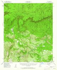 Pine, Arizona 1952 (1962) USGS Old Topo Map Reprint 15x15 AZ Quad 314912