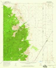 Portal, Arizona 1958 (1959) USGS Old Topo Map Reprint 15x15 AZ Quad 314920