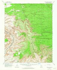 Powell Plateau, Arizona 1962 (1964) USGS Old Topo Map Reprint 15x15 AZ Quad 314922