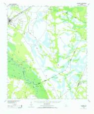 Ludowici, Georgia 1943 (1965) USGS Old Topo Map Reprint 15x15 GA Quad 247506