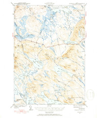 Scraggly Lake, Maine 1941 (1941) USGS Old Topo Map Reprint 15x15 ME Quad 460841