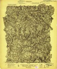 Long Eddy, NY 1921 (1921) USGS Old Topo Map 15x15 NY Quad