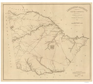 Lexington District, 1825 South Carolina - Old Map Reprint - Mills Atlas RSY