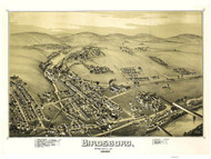 Birdsboro, Pennsylvania 1890 Bird's Eye View - Old Map Reprint