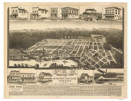 Snohomish, Washington 1890 Bird's Eye View