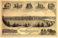 New Brunswick, New Jersey 1880 Bird's Eye View