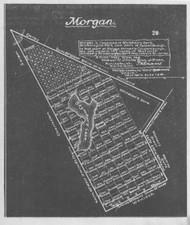 Morgan Lotting Vermont Town Dewart