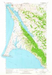 Point Reyes, California 1954 (1965) USGS Old Topo Map 15x15 Quad