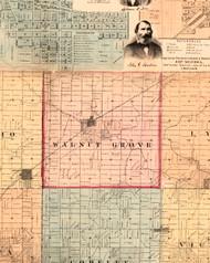 Walnut Grove, Illinois 1861 Old Town Map Custom Print - Knox Co.