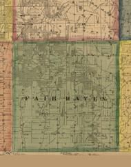 Fair Haven, Illinois 1869 Old Town Map Custom Print - Carroll Co.