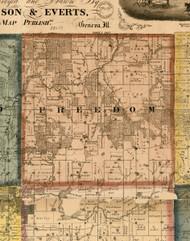 Freedom, Illinois 1869 Old Town Map Custom Print - Carroll Co.