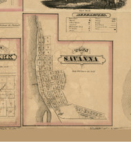 Savanna Village, Illinois 1869 Old Town Map Custom Print - Carroll Co.