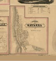 Savanna Village, Illinois 1869 Old Town Map Custom Print - Carroll Co.