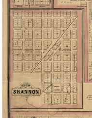 Shannon Village, Illinois 1869 Old Town Map Custom Print - Carroll Co.