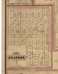 Shannon Village, Illinois 1869 Old Town Map Custom Print - Carroll Co.