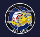 CC005 | Gifts | Bespoke Coin - Chinook / Sea King (double-sided, two designs)