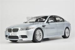1/18 Dealer Edition BMW F10 M5 (Silver) Diecast Car Model