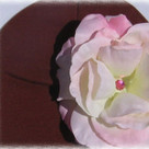 Truffle Pink Rose Baby Hat