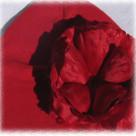Red Rose Toddler Hat