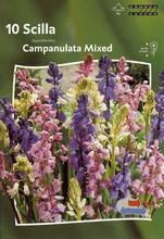 Scilla Campanulata Mixed colors 10_bulbs